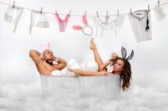Conigli che si siedono in tubo bianco del bagno Fotografie Stock Libere da Diritti