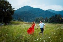 La coppia amorosa attraente allegra sta tenendosi per mano mentre camminava lungo il prato della margherita ai precedenti del Immagini Stock