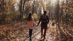 La coppia gli amanti sta camminando nel giorno di autunno in parco, tenendosi per mano, vista posteriore video d archivio