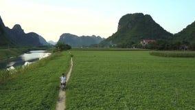 La coppia guida il motorino lungo la strada rurale fra i campi aerei stock footage