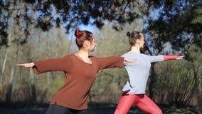 La coppia le donne che esercitano la forma fisica di yoga mette in mostra in Forest Park archivi video