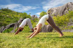 La coppia sorridente che fa l'yoga si esercita all'aperto Fotografie Stock