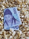 La Corée du Sud, le pays consommateur de maïs, le tas des grains de maïs et le billet de banque sud-coréen de 1000 gagnés photographie stock