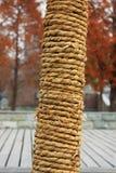 La corda Immagini Stock