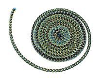 La corda rampicante ha arricciato in una spirale Immagini Stock