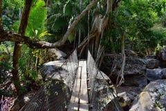 La corde et le fil ont suspendu le pont accrochant à travers une rivière de jungle en EL Éden par Puerto Vallarta Mexique où des  Photographie stock libre de droits