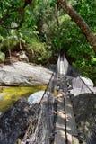 La corde et le fil ont suspendu le pont accrochant à travers une rivière de jungle en EL Éden par Puerto Vallarta Mexique où des  Image libre de droits