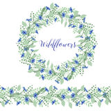 La corona dei fiordalisi fiorisce su un fondo bianco Elemento della decorazione Fotografia Stock