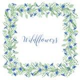 La corona dei fiordalisi fiorisce su un fondo bianco Elemento della decorazione Immagini Stock Libere da Diritti