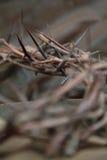 La corona delle spine mette il fuoco in cortocircuito Fotografia Stock Libera da Diritti