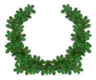 La corona di festa del pino verde si ramifica per il Natale Fotografie Stock Libere da Diritti