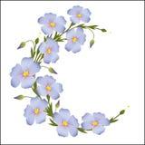 La corona di lino fiorisce intorno all'ornamento Immagini Stock Libere da Diritti