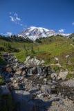 La corrente attraverso i prati alpini conduce alle viste del monte Rainier Immagine Stock