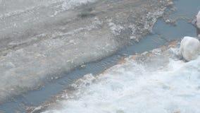 La corrente della primavera attraversa l'asfalto stock footage