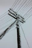 La corrente elettrica allinea con la brina sul palo elettrico di legno sulla campagna nell'inverno Immagini Stock Libere da Diritti