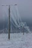 La corrente elettrica di fase rotta allinea con la brina sui pali elettrici di legno sulla campagna nell'inverno dopo la tempesta Fotografia Stock Libera da Diritti