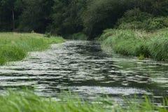 La corrente Ryck vicino a Heilgeisthof, Meclemburgo-Pomerania, Germania Immagini Stock Libere da Diritti