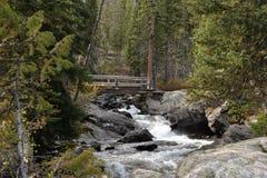 La corrente viene ruggendo giù la montagna velocemente ed in anticipo furioso in primavera fotografie stock