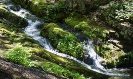 La corriente de la montaña conecta en cascada abajo la pendiente Imagenes de archivo