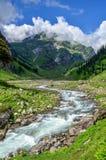 La corriente en el valle - nallah de Rani Fotos de archivo