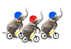 La corsa di bicicletta. Fotografia Stock