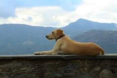 La Corse Images stock