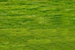 La corte del fútbol con la hierba verde diurna vacia imagen de archivo libre de regalías