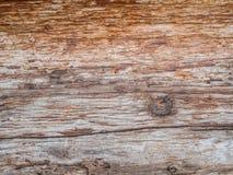 La corteza marrón vieja muerta y gnarl textura del árbol Fotografía de archivo libre de regalías