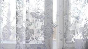 La cortina de ventana se convierte en el viento Cortina blanca Los soplos del viento metrajes