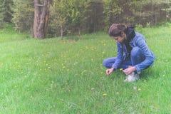 La cosecha adolescente hermosa de la muchacha florece en el prado Fotografía de archivo libre de regalías