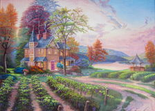 La cosecha de uvas Foto de archivo libre de regalías