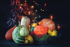 La cosecha hermosa coloreó las calabazas en conmemoración de Halloween en el fondo de guirnaldas festivas Copie el espacio foto de archivo
