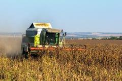 La cosechadora cosecha la cosecha del girasol Foto de archivo libre de regalías