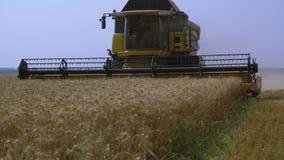 la Cosechadora-máquina segador recolecta el trigo almacen de metraje de vídeo