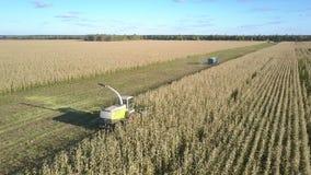 La cosechadora moderna se coloca en granja y las hojas del tractor colocan almacen de video