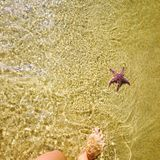 La costa Immagini Stock