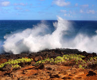 La costa costa de Kauaian Foto de archivo