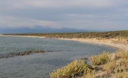 La costa costa regional del parque de San Rossore con la playa arenosa abandonada y las montañas ajardinan Imagen de archivo