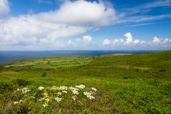 La costa de Cornualles entre las pistas termina y St. Ives imagen de archivo libre de regalías