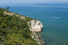 La costa de Gargano (Apulia) en el verano Fotografía de archivo libre de regalías