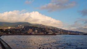 La costa de la ciudad en el amanecer almacen de video