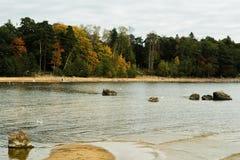 La costa del golfo finlandese del Mar Baltico in autunno Immagini Stock