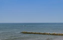 La costa del Mar Baltico la spiaggia in Zelenogradsk Fotografie Stock
