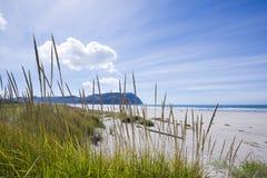 La costa del Pacifico infinita con erba sulle onde di sabbia Fotografia Stock