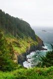 La costa del Pacifico U.S.A. l'oregon nebbia Immagine Stock Libera da Diritti