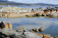 Costa nella baia della Tasmania di fuoco Australia Fotografie Stock