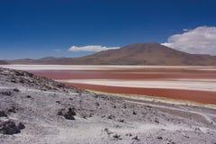 La costa pietrosa di una laguna di Colorado in Bolivia Immagine Stock Libera da Diritti