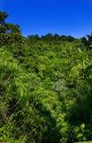 La Costa Rica Fotografie Stock