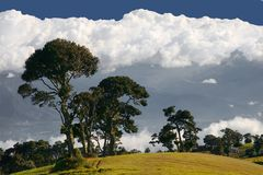 La Costa Rica Parque Nacional Volcan Irazu Fotografia Stock