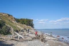 La costa ripida di Brodtener vicino al nde del ¼ di Travemà immagine stock